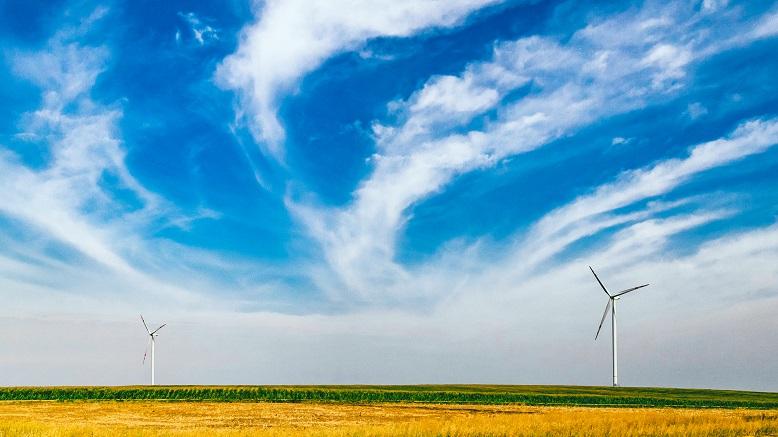 Renewables-BS-article